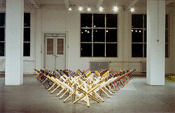 The Multiplicity of the X, 35x6x045 m, 1987